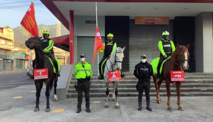 CABALLOS POLICIALES