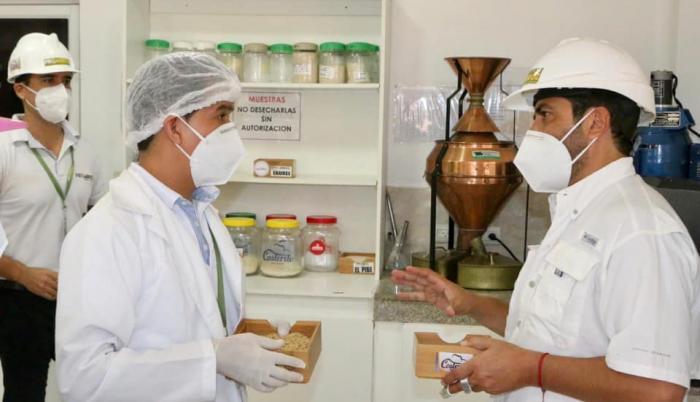 pequeñas empresas+pandemia+ayuda