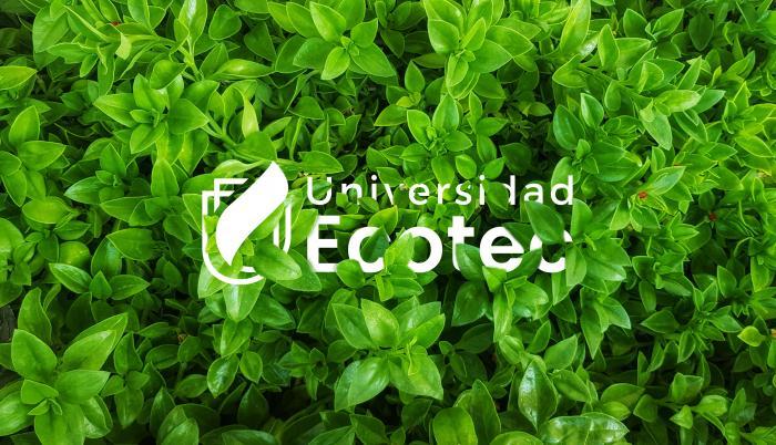 ecotec-carbono-neutro