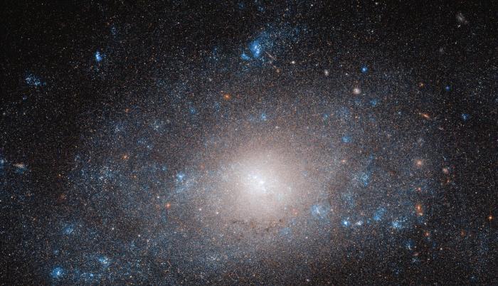 La galaxia NGC 5585