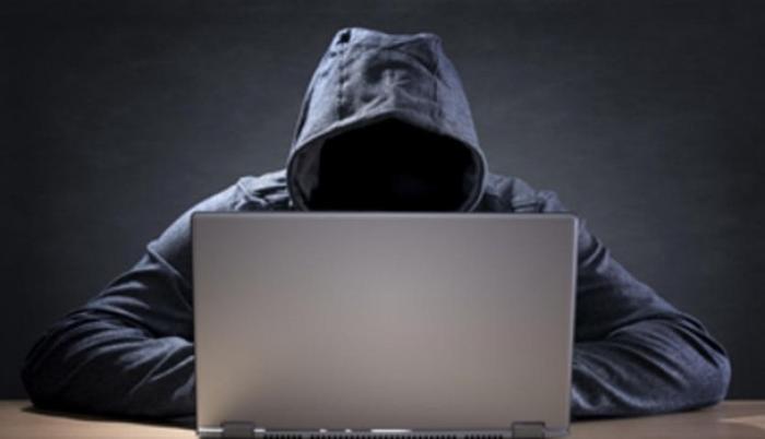 Robos- internet- interpol- delitos