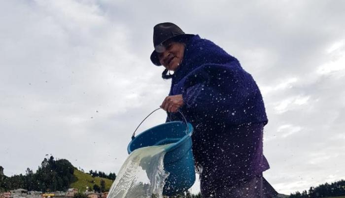 Tradición. Dolores Toalombo, riega la chacra (tierra), de esta manera se crea una fina lámina de sal.