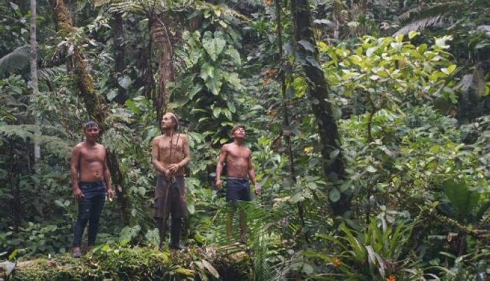 selva Wao