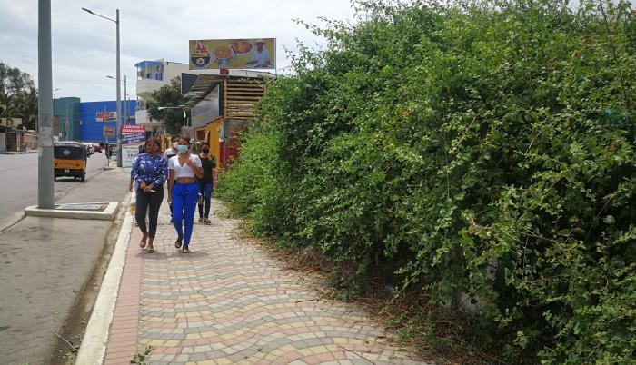 maleza Playas