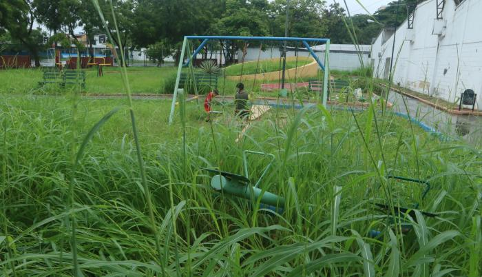 Parque Floresta 1