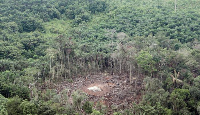 Vista aérea del lugar del bombardeo del 1 de marzo de 2008, realizado por fuerzas colombianas en el que murió el segundo de las FARC, Raúl Reyes, en Angostura, provincia de Sucumbios en zona fronteriza con Colombia.