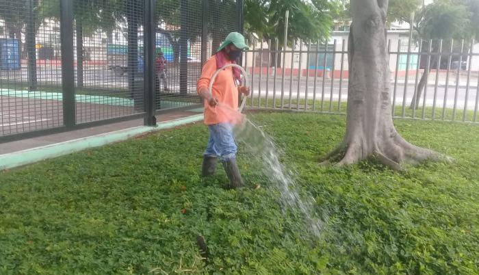Trabajadores limpian  las cenizas    1
