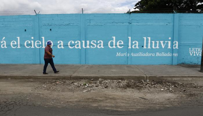 MURAL DE LA 44 Y LA C (33197751)