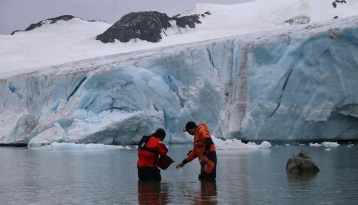 Fotografía cedida hoy la Armada Argentina que muestra a científicos que realizan una investigación en la Antártida.